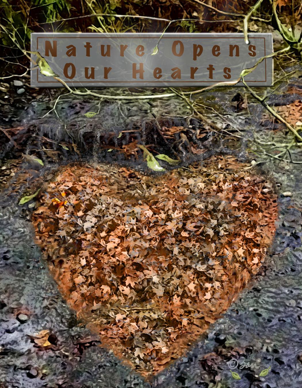 Digitally enhanced nature photo