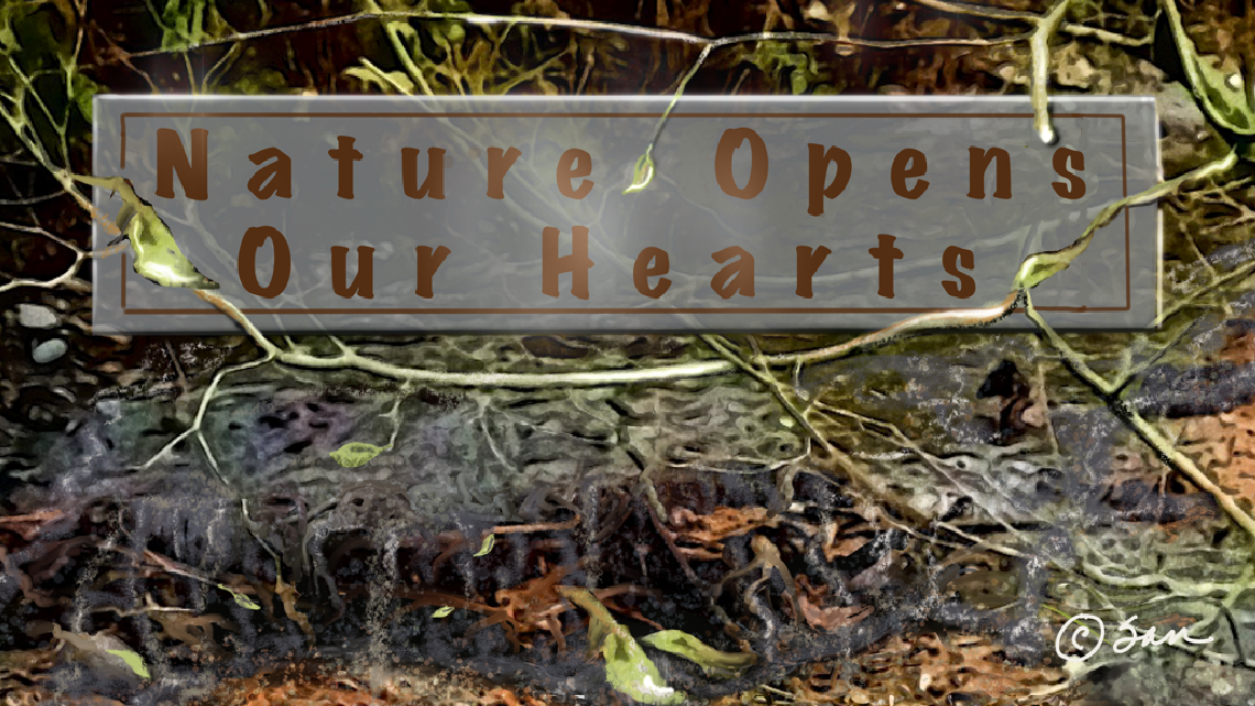 Nature opens our hearts